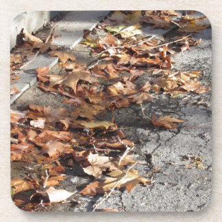 Feuille mort se trouvant au sol en automne dessous-de-verre