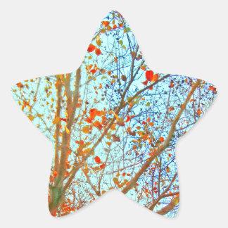 Feuille orange d'automne et ciel bleu sticker étoile