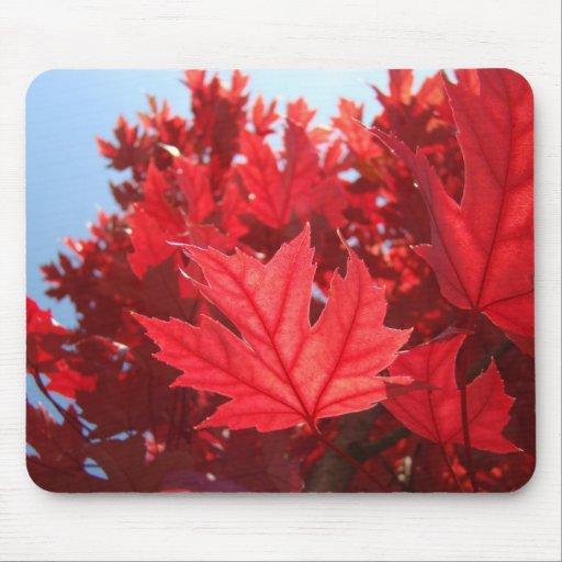feuille rouge d 39 arbre d 39 automne de mousepad de feu tapis de souris zazzle. Black Bedroom Furniture Sets. Home Design Ideas