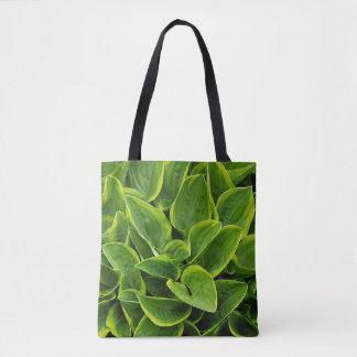Feuille vert de plante de hosta sac