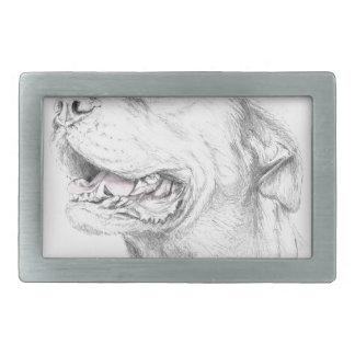 Fidélité, un Staffordshire Terrier américain Boucles De Ceinture Rectangulaires
