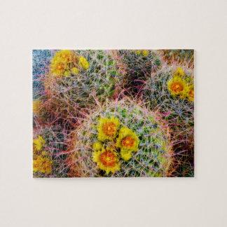 Fin de cactus de baril, la Californie Puzzles