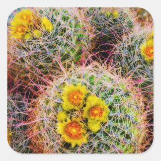 Fin de cactus de baril, la Californie Sticker Carré