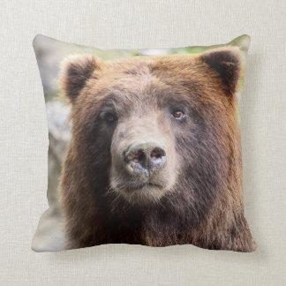 Fin de portrait d'ours gris coussin