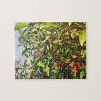 Firebush avec le puzzle de colibri et d'insectes