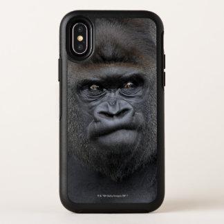 Flachlandgorilla, gorille de gorille