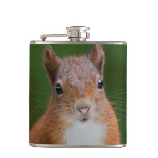 Flacon assoiffé de hanche d'écureuil