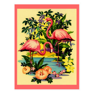 FLAMANTS ASSEZ ROSES EN CARTE POSTALE TROPICALE DE