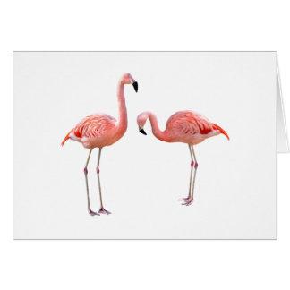 """flamingo""の優良製品 カード"