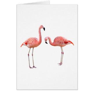 """""""flamingo""""の優良製品 グリーティングカード"""