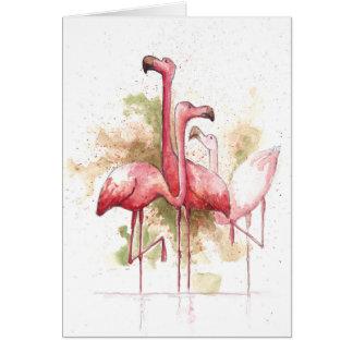 Flamingos Cartes De Vœux