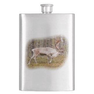 Flasque Renne marchant dans la forêt
