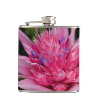 Flasques Beauté rose
