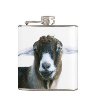 Flasques Chèvre maladroite