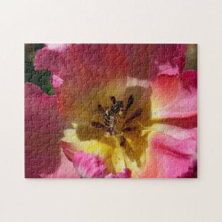 Fleur avec Hoverfly, puzzle de photo