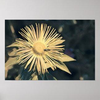 Fleur avec l'affiche/copie de guêpe poster