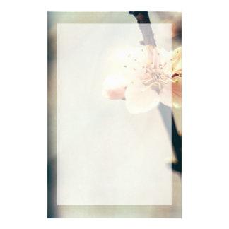 Fleur blanche, arbre de floraison au printemps papeterie