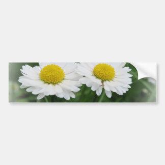 fleur blanche de ressort dans l'herbe verte autocollant pour voiture