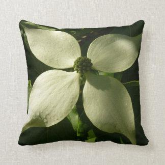 Fleur blanche de ressort de fleur ensoleillée de coussin décoratif