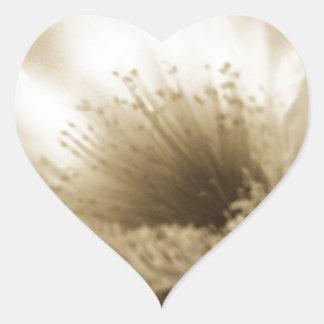Fleur blanche de sépia sticker cœur