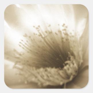 Fleur blanche de sépia sticker carré