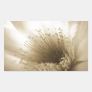 Fleur blanche de sépia sticker rectangulaire