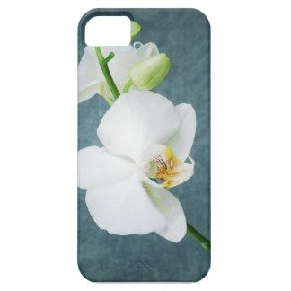 Fleur blanche d'orchidée de zen coques Case-Mate iPhone 5