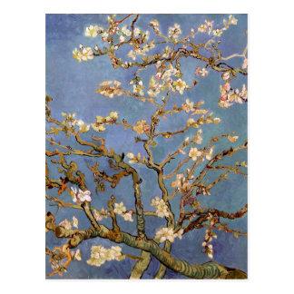 Fleur d'amande de Van Gogh Carte Postale