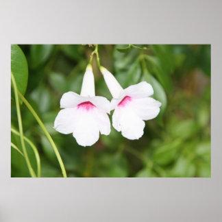 Fleur de Bell de mariage Affiche