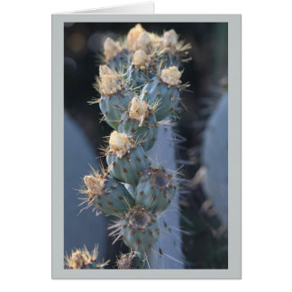 fleur de cactus carte de vœux