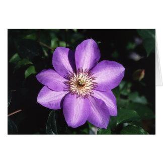 Fleur de clématite pourpre et carte de faits