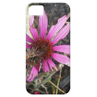 Fleur de cône en automne iPhone 5 case