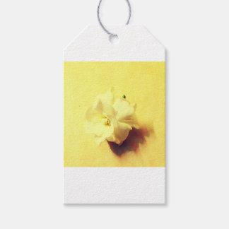 Fleur de jasmin étiquettes-cadeau