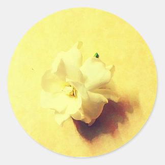 Fleur de jasmin sticker rond