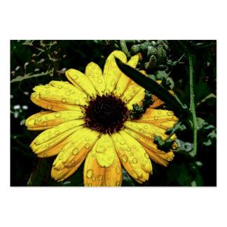 Fleur de l'amour modèle de carte de visite