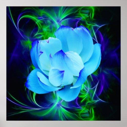 fleur de lotus bleu et sa signification poster zazzle. Black Bedroom Furniture Sets. Home Design Ideas
