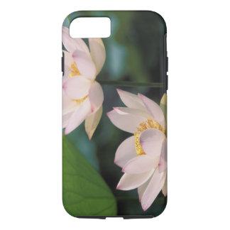 Fleur de Lotus dans la fleur, Chine Coque iPhone 7