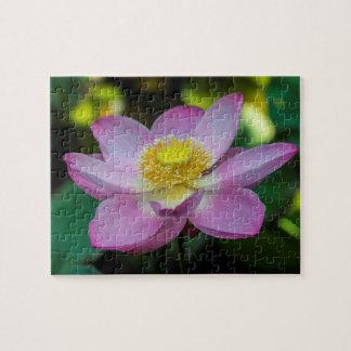 Fleur de lotus de floraison, Indonésie Puzzle