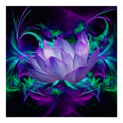 fleur de lotus pourpre et sa signification posters zazzle. Black Bedroom Furniture Sets. Home Design Ideas