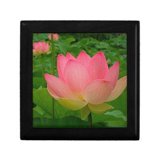 Fleur de Lotus sacré Boîte À Souvenirs