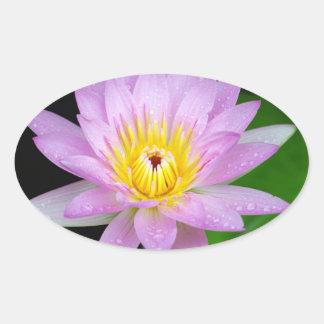 Fleur de Lotus Sticker Ovale