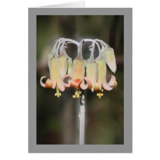 Fleur de lustre carte de vœux