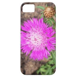 Fleur de maïs coque iPhone 5 Case-Mate