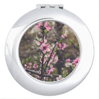 Fleur de pêche miroir compact