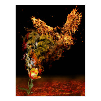 Fleur de Phoenix Carte Postale