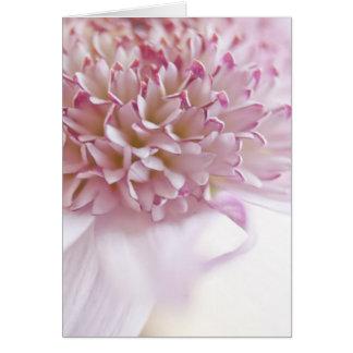 Fleur de rose en pastel carte de vœux