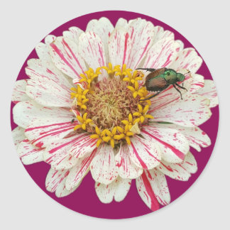 Fleur de scarabée sticker rond