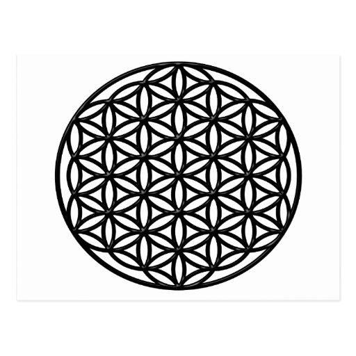 Fleur de symbole sacr de la g om trie de la vie cartes postales zazzle - Symbole de la vie ...
