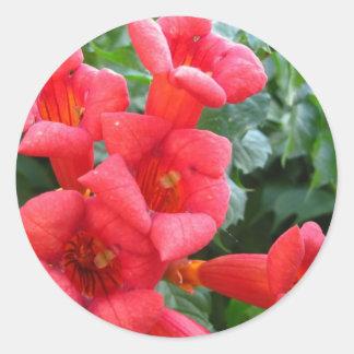 Fleur de trompette rouge adhésifs