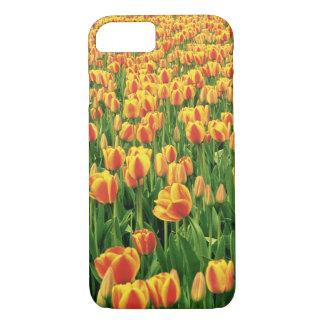 Fleur de tulipes de ressort devant la vieille coque iPhone 7